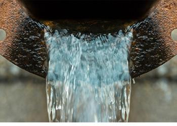 Imagen con fines ilustrativos tomada de ecoportal.net.*