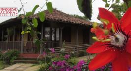 Museo de Cultura exhibe mascaradas a la antigua