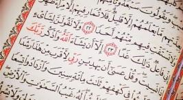 celebracion-dia-mundial-de-la-lengua-arabe5