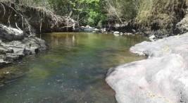 Guacimal rio Veracruz