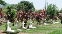 Una universidad en el cementerio2