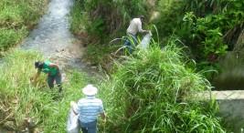 Rio Jabonal foto UCR