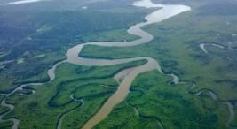 Imagen tomada de ecosistemasdecostarica.blogspot.com