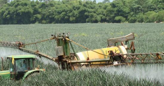 Imagen con fines ilustrativos tomada de www.i-ambiente.es