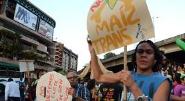 La protesta social es un derecho humano UCR