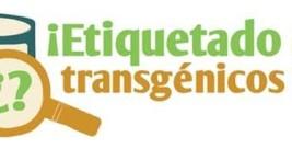 Estudio detecta ingredientes transgenicos en alimentos
