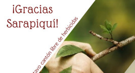 Sarapiqui territorio libre de aplicacion de herbicidas