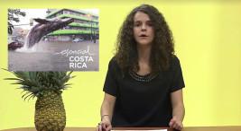Estudiantes de UCR elaboran videos pina y cel