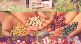 Imagen con fines ilustrativos tomada de la nota de SURCOS TEC: Foro luchas ambientales e indígenas