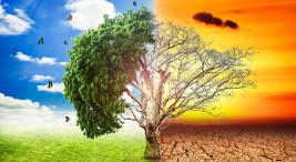 Imagen con fines ilustrativos tomada de cienciados.com
