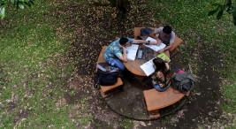 Estudiantes en zonas verdes