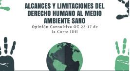 Alcances y limitaciones del derecho humano al medio ambiente sano2