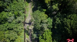 No a la destruccion del parque nacional Tortuguero
