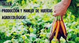 Taller Produccion y Manejo de Huertas Agroecologicas2