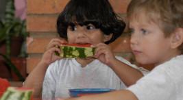 UCR Escuela de Nutricion busca ser un referente frente a mitos alimenticios