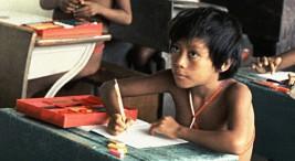Tomada del documento Conocimiento indigena y politicas educativas en América Latina