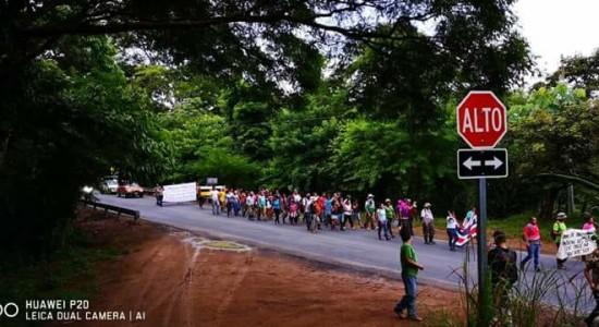 70 indigenas proceden con recuperacion de una extensa finca en Rey Curre3