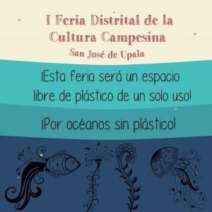 Comunidades de San Jose de Upala realizaran I Feria de la Cultura Campesina
